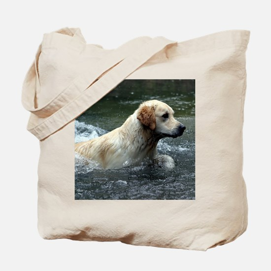 Labradoodle mousepad Tote Bag