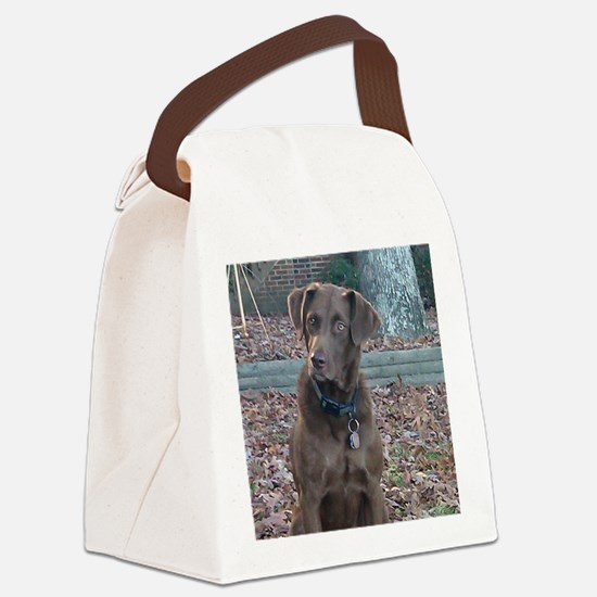 Hunter_cafepress1 Canvas Lunch Bag