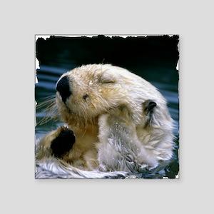 "beaver shirt Square Sticker 3"" x 3"""
