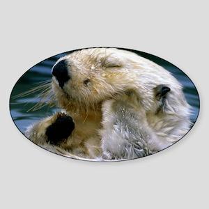 beaver greting Sticker (Oval)