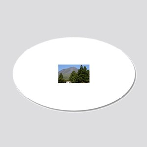 casa dos alpes2 20x12 Oval Wall Decal