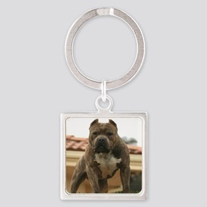 5minutes_vick_lgframed Square Keychain