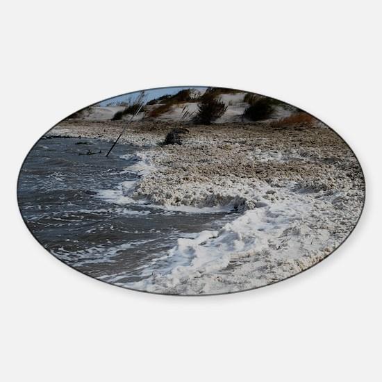 DSC_0167 Sticker (Oval)