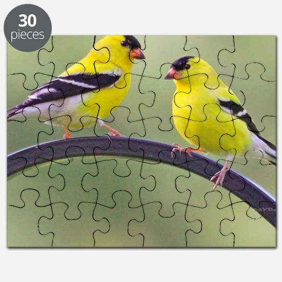 goldfinchSQ Puzzle