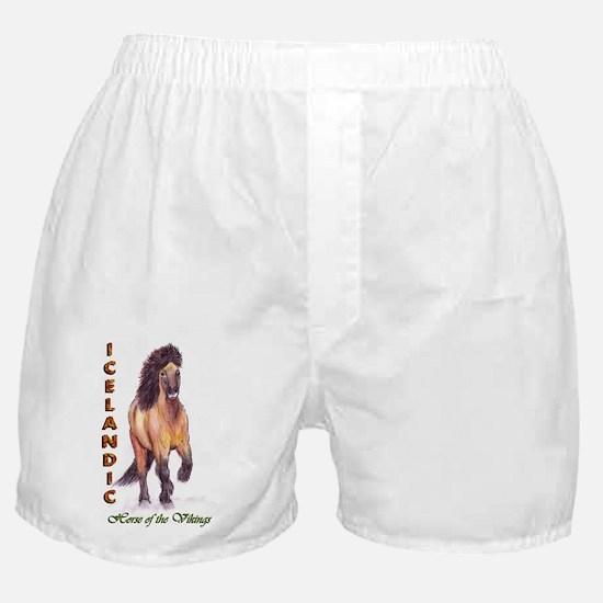 icy2010textbig Boxer Shorts
