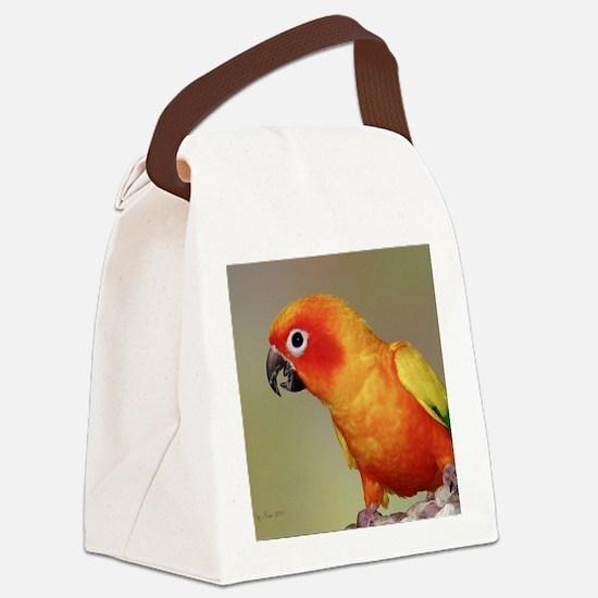 TacocalendarIMG_0002 Canvas Lunch Bag