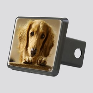 Dachshund 9L007D-15 Rectangular Hitch Cover