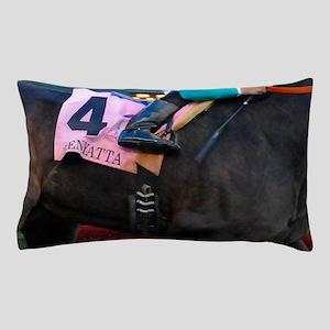 blanket Pillow Case
