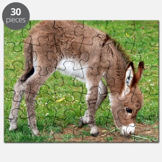 Newborn Donkey Foal Puzzle