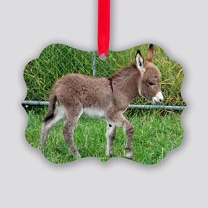 Miniature Donkey Foal Picture Ornament