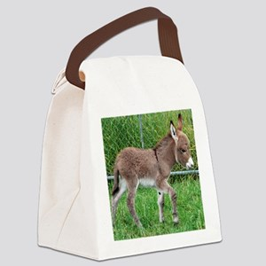 Miniature Donkey Foal Canvas Lunch Bag