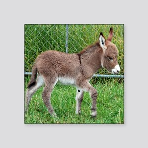 "Miniature Donkey Foal Square Sticker 3"" x 3"""