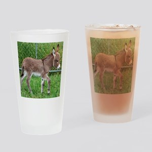 Miniature Donkey Foal Drinking Glass