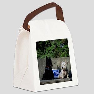 DSCI0014 Canvas Lunch Bag