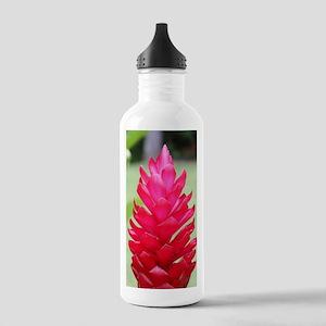 torchgingerjournalcove Stainless Water Bottle 1.0L