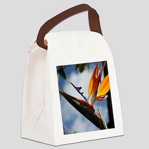 birdparadisenotecard Canvas Lunch Bag
