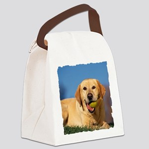 LabTB shirt Canvas Lunch Bag
