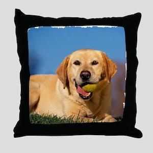 LabTB shirt Throw Pillow