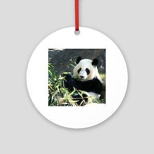 panda2 - Copy Round Ornament