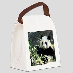 panda2 - Copy Canvas Lunch Bag