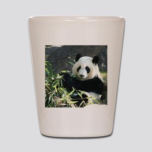 panda2 - Copy Shot Glass