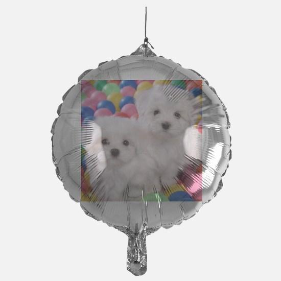 bishonFB pillow Balloon
