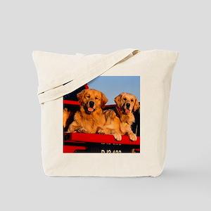 Golden PU pillow Tote Bag
