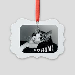 Ho hum larger Picture Ornament