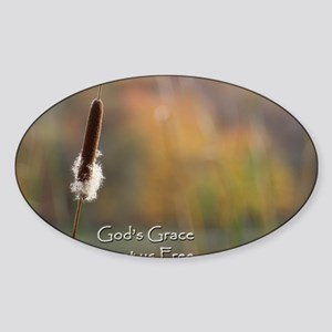 Gods Grace Cattail Sticker (Oval)