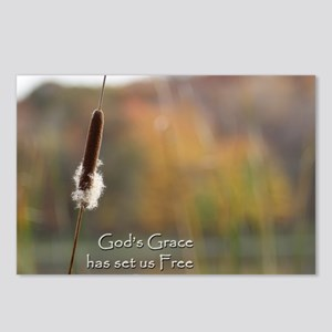 Gods Grace Cattail Postcards (Package of 8)