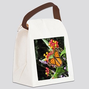 007 IMG_5599-NICE BUTTERFLY -edit Canvas Lunch Bag