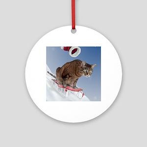 cpsled_stocking Round Ornament
