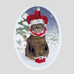 cpjeste_stocking Oval Ornament