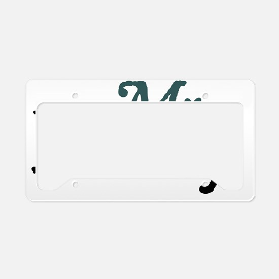mrdarcy copy License Plate Holder