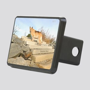 ShermCover Rectangular Hitch Cover