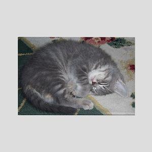 Gracie Sleeping Rectangle Magnet
