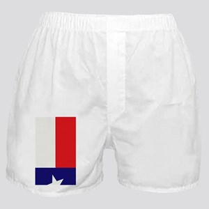 Texas_1.97x4.20 Boxer Shorts