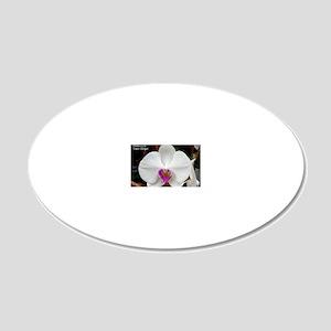 Phal. Tinny Gladgirl 20x12 Oval Wall Decal
