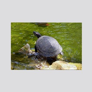 turtle note card Rectangle Magnet