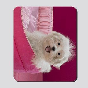 pink pup ipad Mousepad