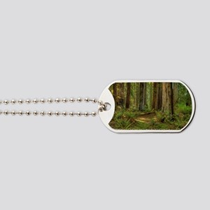 redwoods Dog Tags