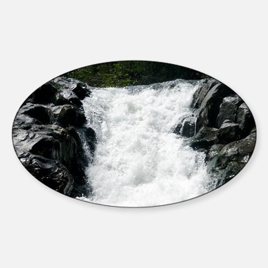 18 footer Sticker (Oval)