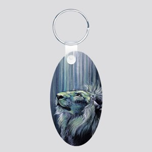 Illumination Aluminum Oval Keychain