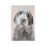 Wirehaired Pointing Gr Rectangle Magnet (100 pack)