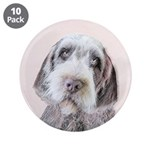 Wirehaired Pointing Griffon 3.5