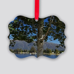 Lake Te Anau, Fiordland, South Is Picture Ornament
