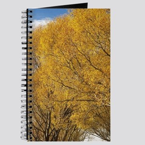 Willow Trees and Central Otago Rail Trail, Journal