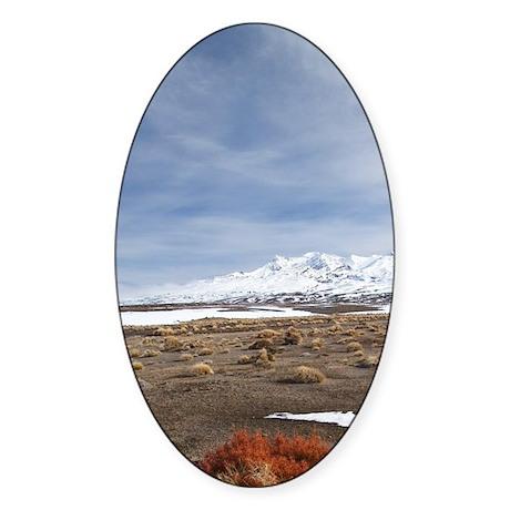 Rangipo Desert and Mt Ruapehu Sticker (Oval)