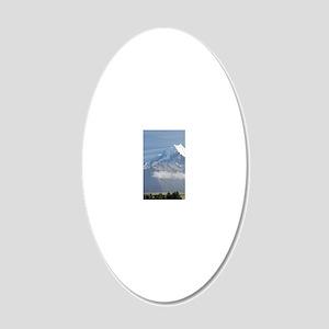 Aoraki / Mt Cook and Farmlan 20x12 Oval Wall Decal