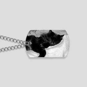 card lazy day Dog Tags